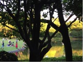 和風庭園と道を挟んだ向かい側には広々とした公園があり、いつも子供や犬が遊んでいます。私が勤めている頃、夕方には「犬の放し飼いをしないように。」というアナウンスがよくかかっていました。